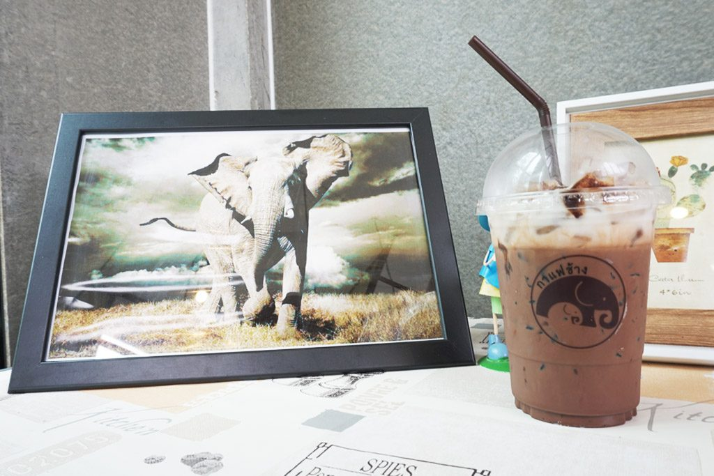 กาแฟช้าง